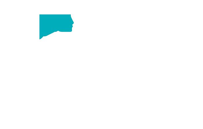 IceSLEET G4 Silent Name 2